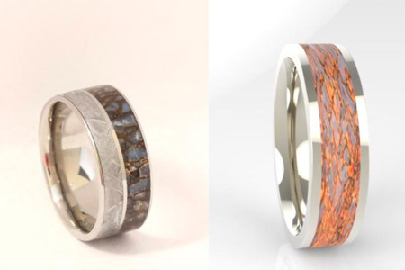 Un anillo fósil para un amor de 65 millones de años