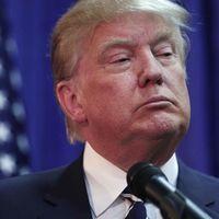 Querido Trump, estamos seguros de que estas medidas proteccionistas le van a encantar
