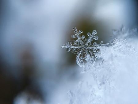 Proteger Equipo Frio Nieve 3