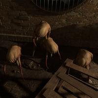 ¿Quién dijo que los Headcrab son peligrosos? En Half-Life: Alyx pueden ser nuestros mejores amigos