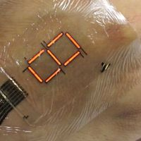 Con esta pantalla el próximo wearable podría estar en nuestra piel