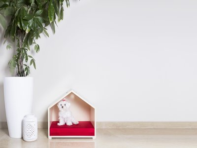 Para una casa pet friendly, los muebles multifuncionales de Full Loft