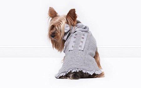 regalos de lujo para mascotas