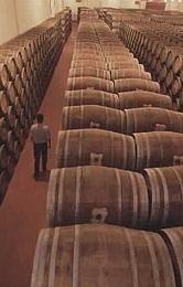 ¿Cómo atajar la caída del consumo del vino?