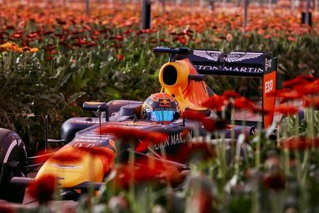 Holanda Red Bull F1 2