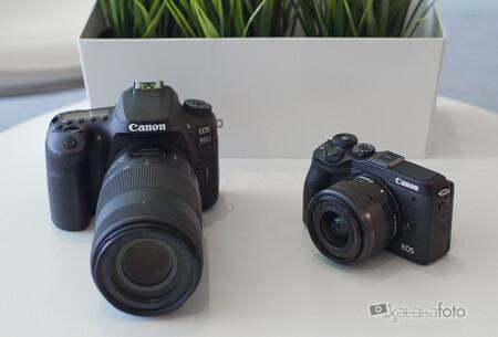 Canon Eos 90d Y M6