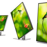 El Dell UP3128K es un monitor 8K y precio de infarto no apto para todos los usuarios