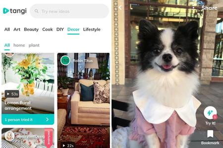 Tangi llega a Android: así es la mezcla de TikTok y Pinterest de Google