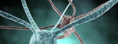 Sobreentrenamiento y sistema nervioso
