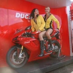 Foto 18 de 35 de la galería las-pit-babes-de-estoril-en-una-ducati-1098 en Motorpasion Moto