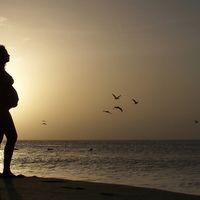 El embarazo más allá del 'Predictor': ahora es un nuevo indicador adelantado de la economía