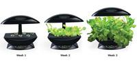 Aerogarden, planta tu propio huerto en casa