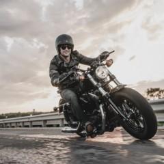 Foto 6 de 24 de la galería gama-harley-davidson-2016 en Motorpasion Moto