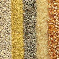 Estas son las calorías, vitaminas y minerales que te aporta cada cereal