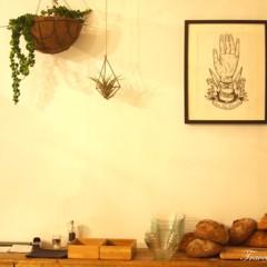Foto 1 de 6 de la galería manorota en Trendencias Lifestyle