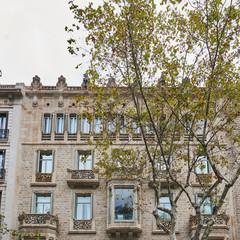 Foto 2 de 19 de la galería massimo-dutti-barcelona-boutique en Trendencias