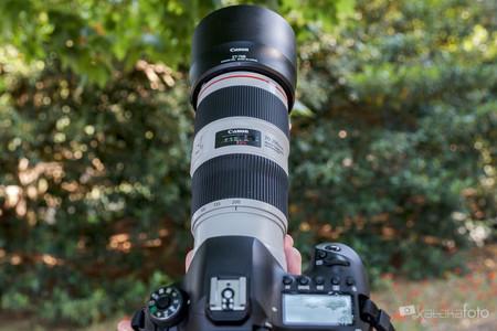 Canon70 200 F4 0464