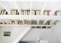 Una biblioteca en el techo