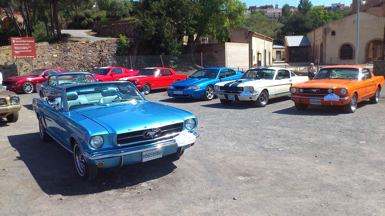Foto de Cabalgada de Mustangs 2013 (1/5)