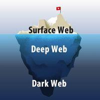 Las cloacas de Internet o cómo hacerse rico en la sombra