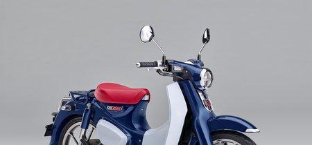¡Incansable! El Honda Super Cub C125 se reinterpreta tras vender más de 100 millones de unidades