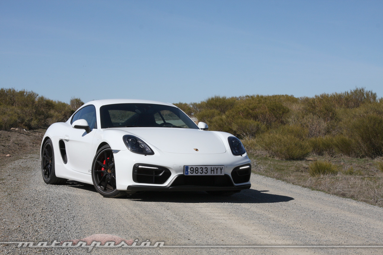 Foto de Porsche Cayman GTS (prueba) (13/34)