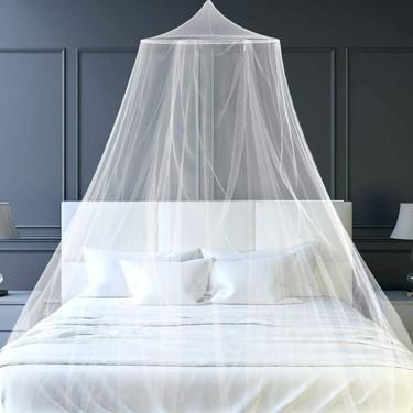 ¿Mosquitos en casa? No dejes que entren con estas soluciones para proteger tu hogar