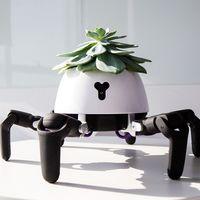 Este robot quiere ser el mejor amigo de tus plantas: las lleva al sol o a la sobra de forma autónoma y avisa cuando necesitan agua