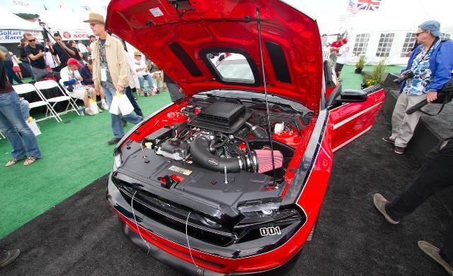 Foto de Mustang Saleen GF 2014 (9/22)
