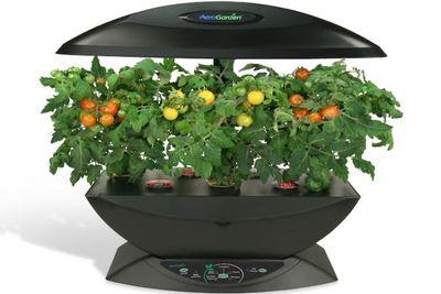 AeroGarden, tener en casa un huerto ecológico con diseño futurista