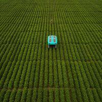 """Mineral es el proyecto de Alphabet para """"producir más comida en los próximos 50 años que en los 10.000 anteriores"""""""