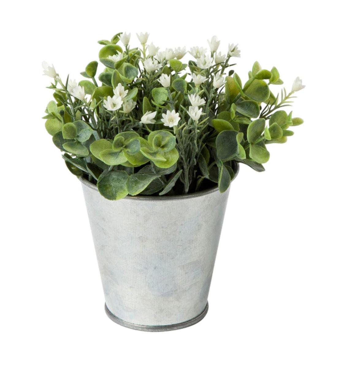 Planta con flores blancas en maceta zinc