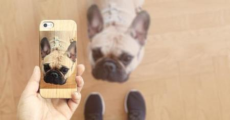 Casetify Custom Case Dog 600x313