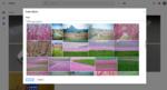 Cuál es la aplicación que mejor te organiza las fotos en el móvil