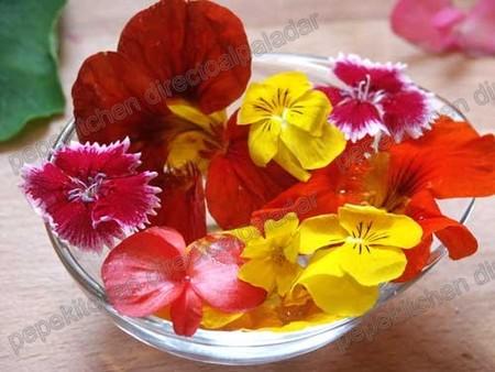 Las flores en la nueva cocina, cata de flores e hierbas