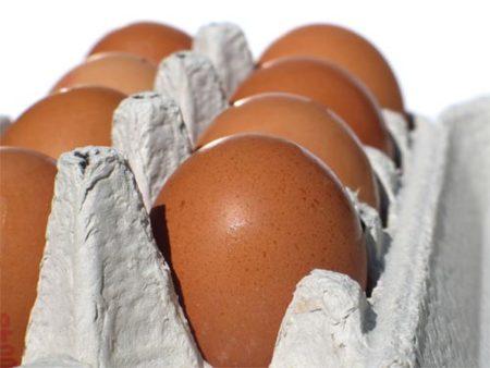 Medidas para evitar la contaminación por salmonella en los huevos