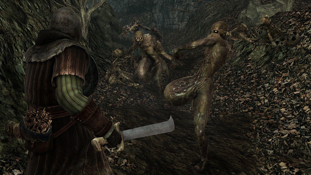 Foto de 170114 - Dark Souls II (20/24)