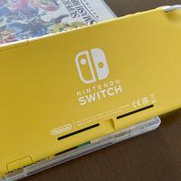 Guía de compra de accesorios para Nintendo Switch Lite: 29 fundas, carcasas, mandos, soportes y tarjetas SD