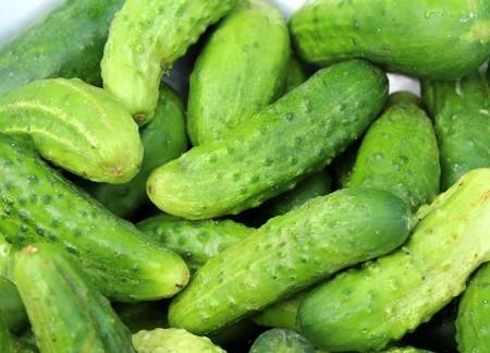 Cucumbers 3534185 1920