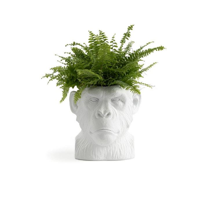 Cubremacetas de resina con forma de cabeza de mono
