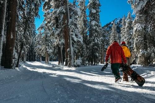 Si lo tuyo es el esquí, este es el entrenamiento que no puede faltarte en el gimnasio