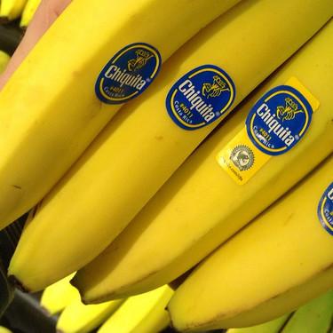 La historia oculta de los plátanos