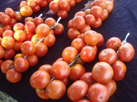 Tomates De Colgar Huerta De Capicorb