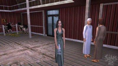 Los Sims 2 para PSP y Nintendo DS