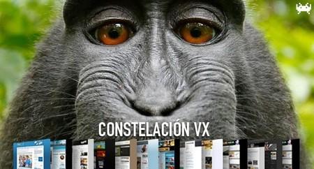 Selfies sobre monos, computación cuántica y razones para instalar un SSD. Constelación VX (CCV)