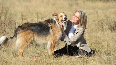 '¡Por fin solos!', un perro llamado McGuffin