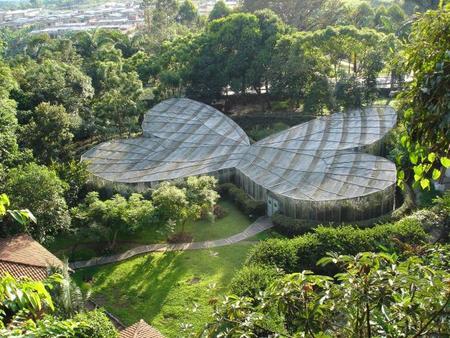 ¿Qué alberga este invernadero con forma de mariposa? El mariposario mejor diseñado del mundo