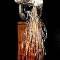 Foto 1 de 9 de la galería peacocks-de-laurel-roth en Trendencias