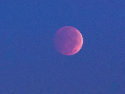 El próximo 31 de enero, la Luna tendrá una apariencia que no había tenido desde hace 150 años