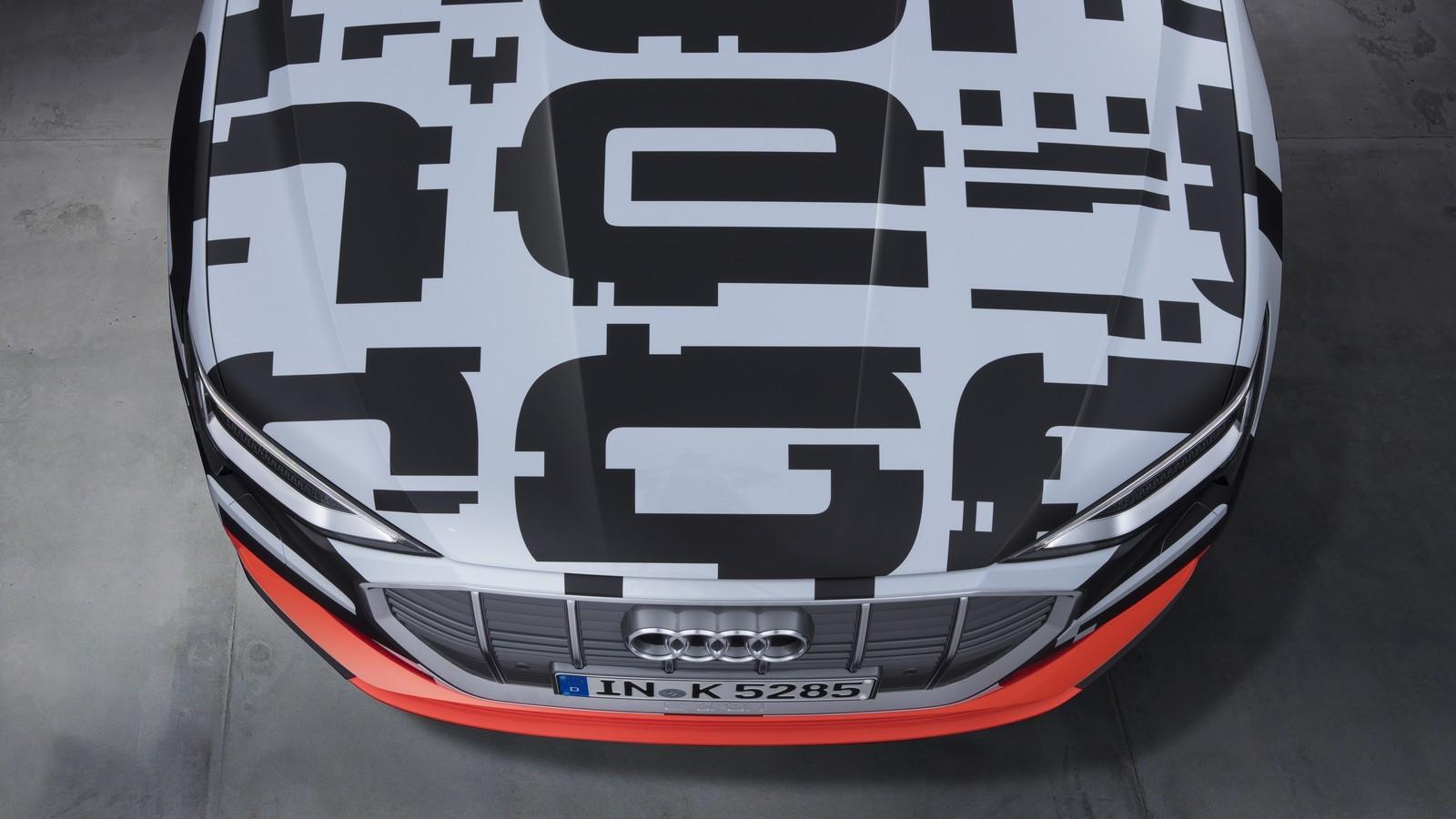 Foto de Audi e-tron prototype (2/21)